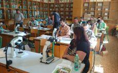 Odborný seminář: Symptomatologie a její využití při diagnostice původců chorob a škůdců okrasných dřevin / fotogalerie / DSC_0075