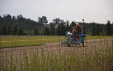 Odborný seminář: Hospodaření s půdou ve školkách