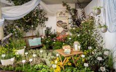 Jedlá zahrada = zahrada plná života / fotogalerie / IMG_6873